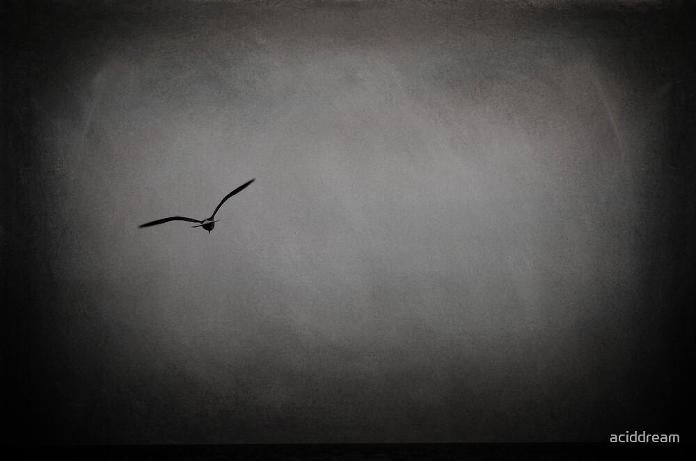 Solitude by aciddream