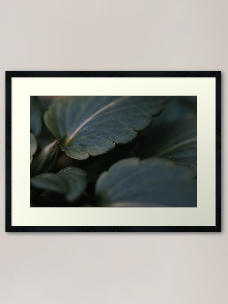 Alternate view of Thick Leaf Framed Art Print
