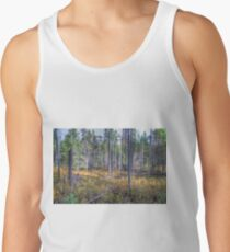 Pine trees in the marsh Tank Top