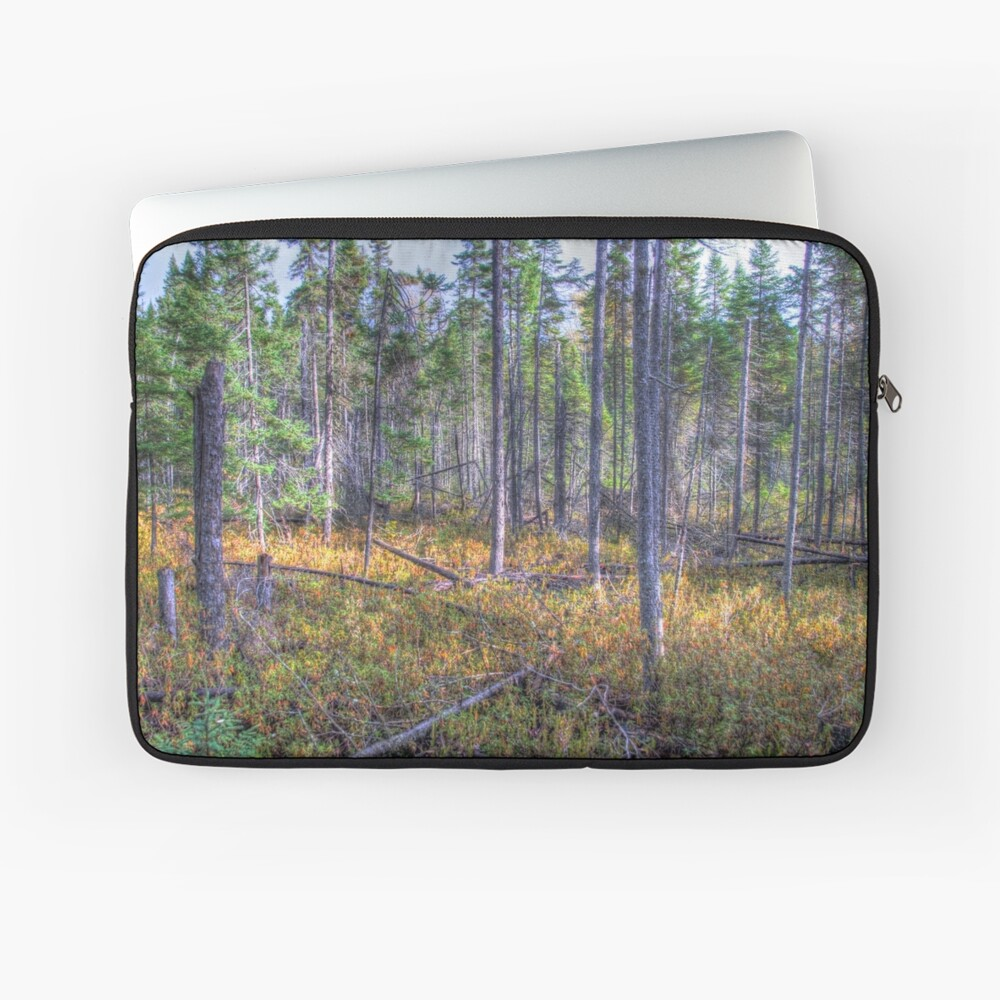 Pine trees in the marsh Laptop Sleeve