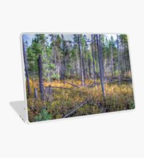 Pine trees in the marsh Laptop Skin