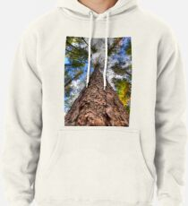 Tall Pine Pullover Hoodie