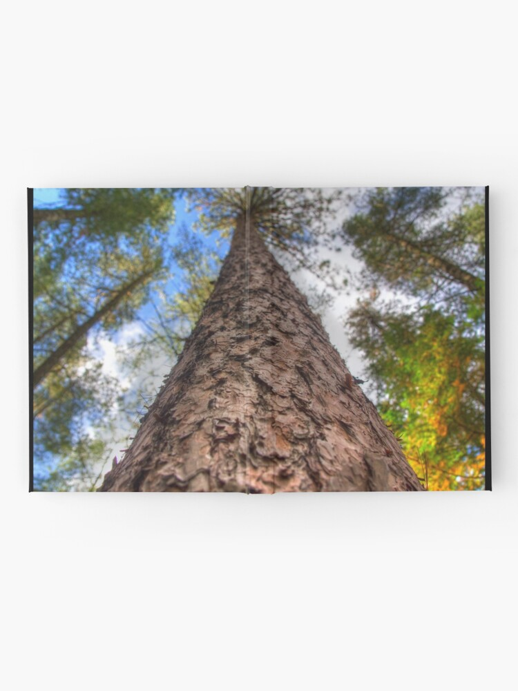 Alternate view of Tall Pine Hardcover Journal