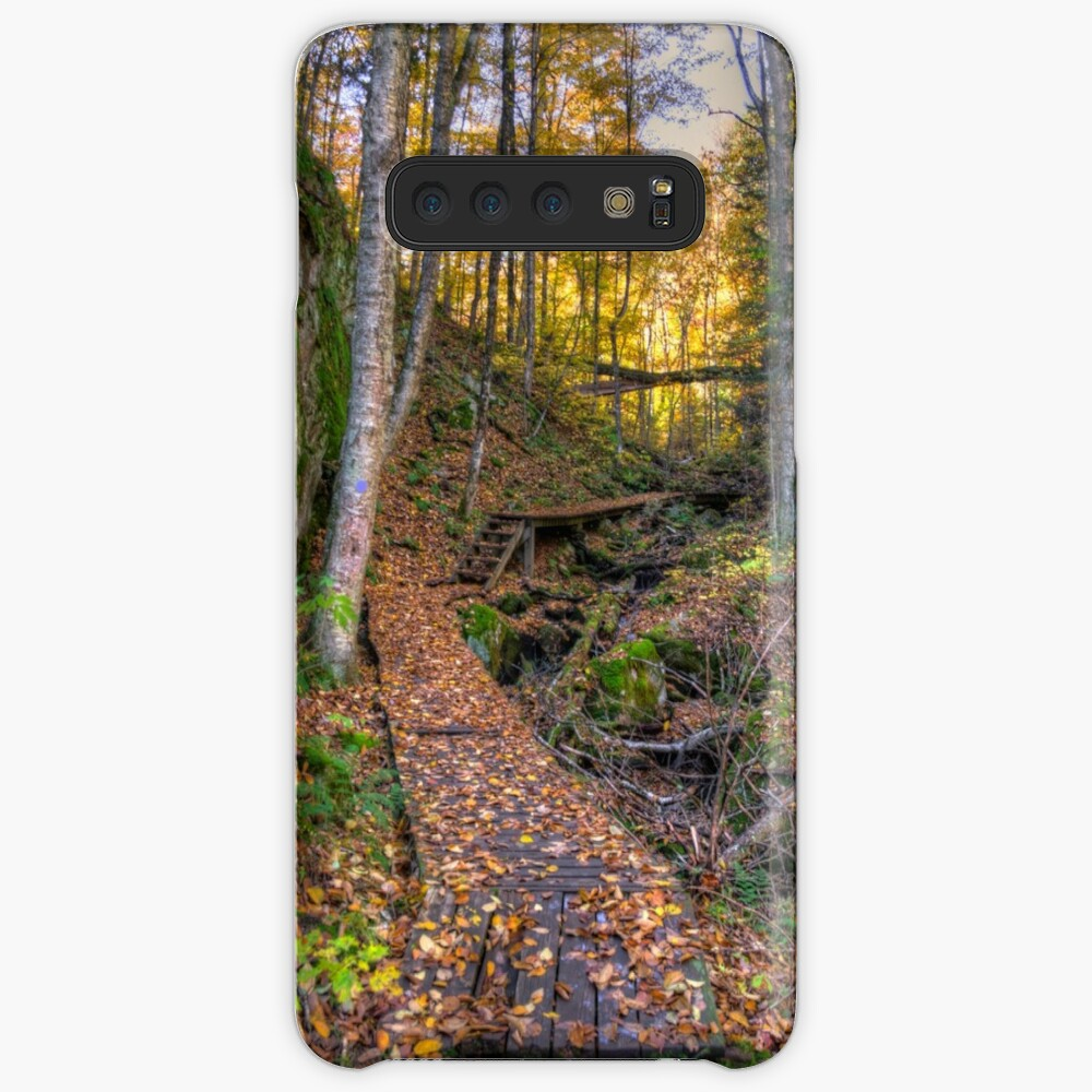 Walkway through the woods Case & Skin for Samsung Galaxy