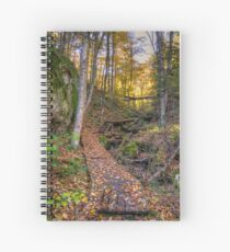 Walkway through the woods Spiral Notebook