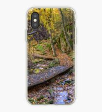 Forest walkway iPhone Case