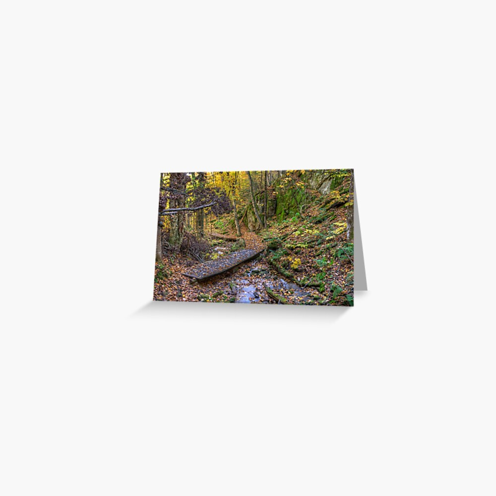 Forest walkway Greeting Card