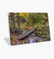 Forest walkway Laptop Skin