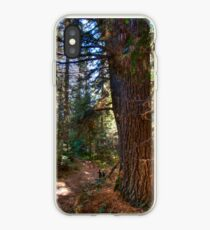 Big pine iPhone Case