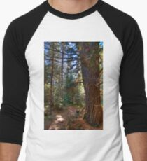 Big pine Baseball ¾ Sleeve T-Shirt