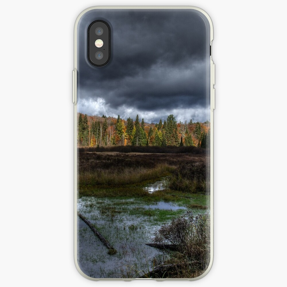 Stormy marsh iPhone Case & Cover