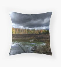 Stormy marsh Throw Pillow