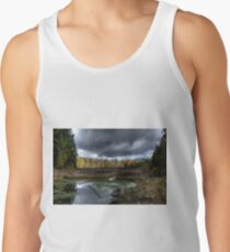 Stormy marsh Tank Top