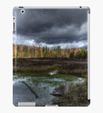 Stormy marsh iPad Case/Skin
