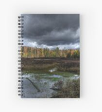 Stormy marsh Spiral Notebook