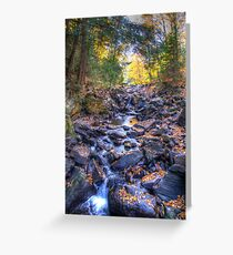 Rocky riverbed Greeting Card