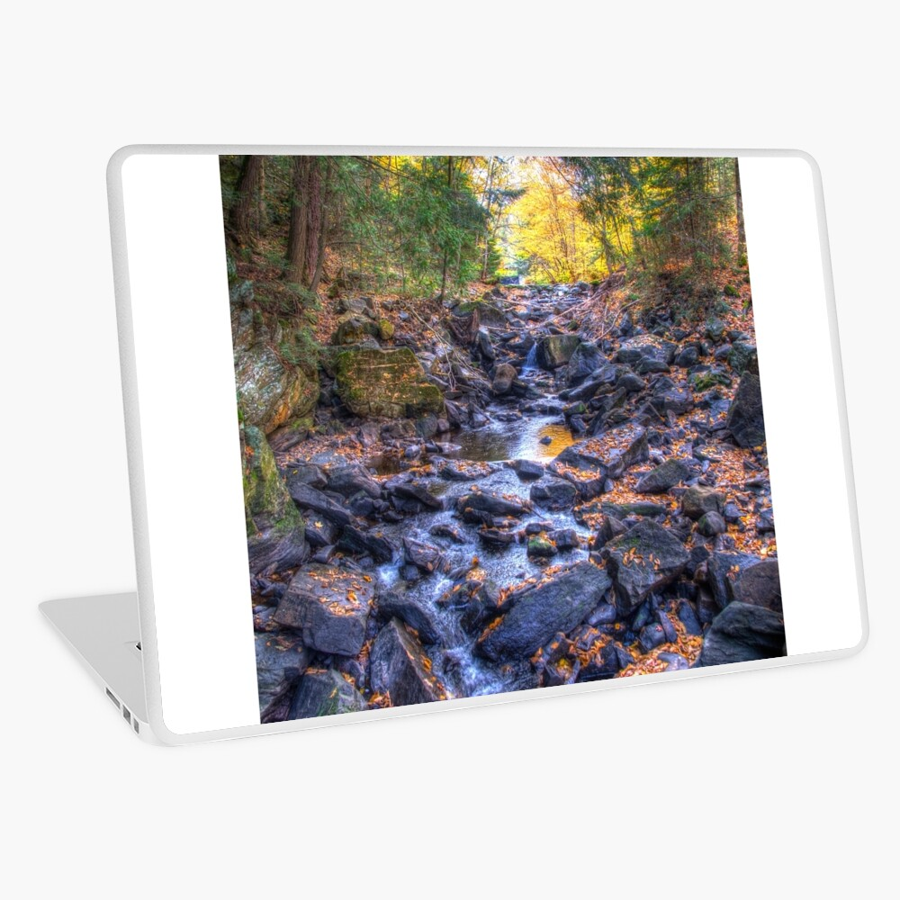Rocky riverbed Laptop Skin