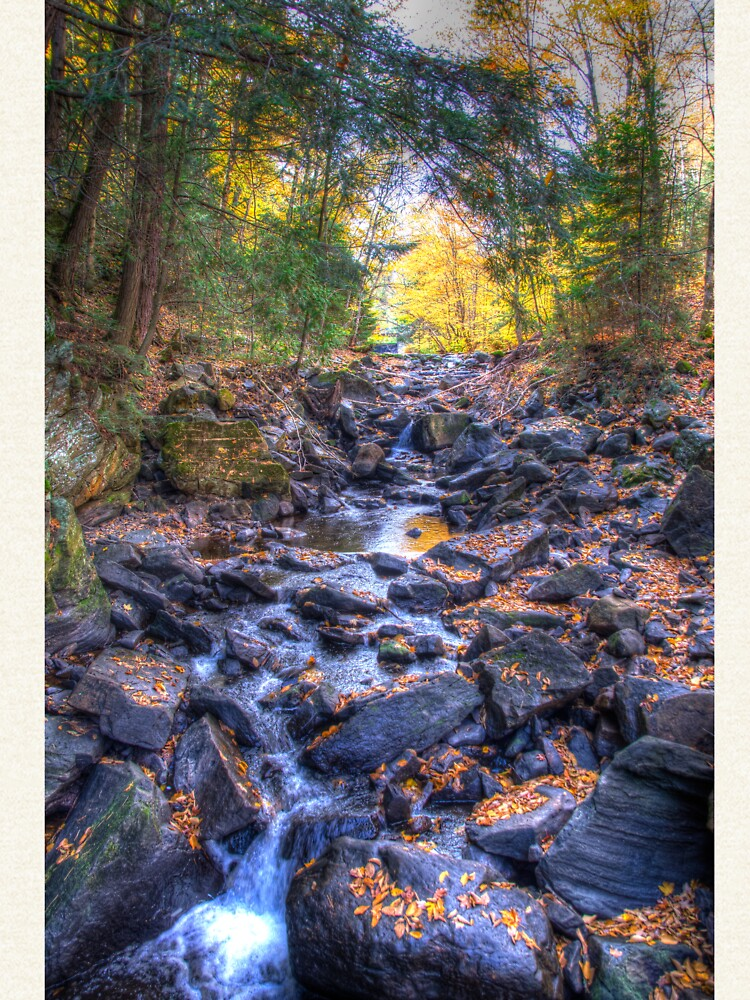 Rocky riverbed by daveriganelli