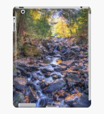 Rocky riverbed iPad Case/Skin