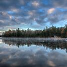 Reflected trees and sky by Dave Riganelli