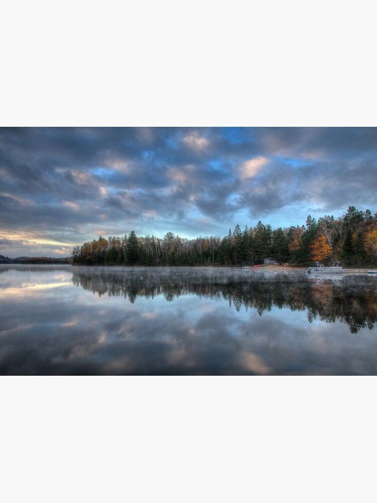 Reflected trees and sky by daveriganelli