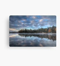 Reflected trees and sky Metal Print