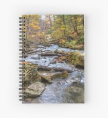 Forest river Spiral Notebook