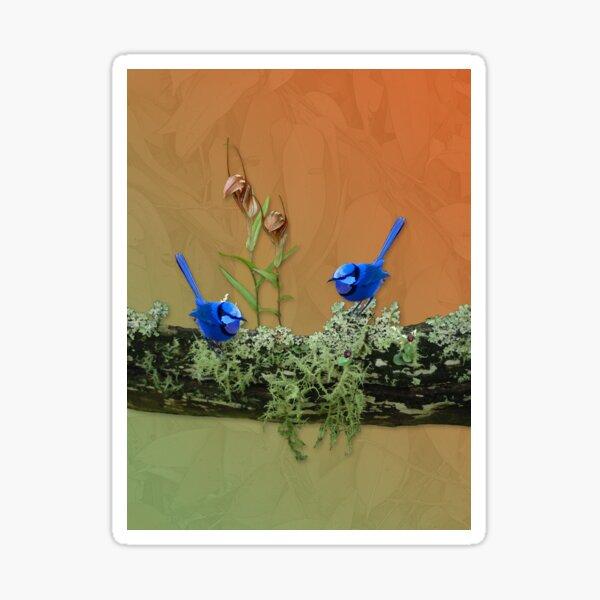 Blue Wrens & Winter Orchids Western Australia Sticker