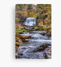 Forest waterfall Canvas Print