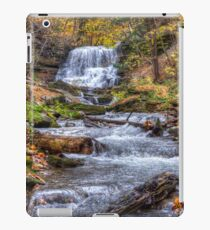Forest waterfall iPad Case/Skin