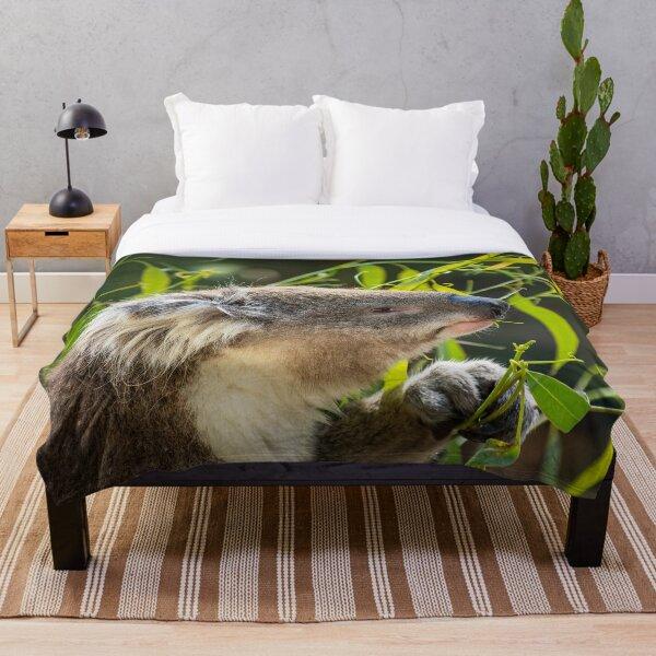 """Koala Mouthful"" - Native Australian Animals|Cute Australian Animals Throw Blanket"