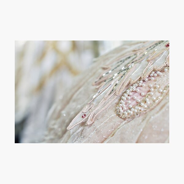 Ballet Bling Photographic Print