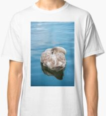 Mute Swan Cygnet at Rest Classic T-Shirt