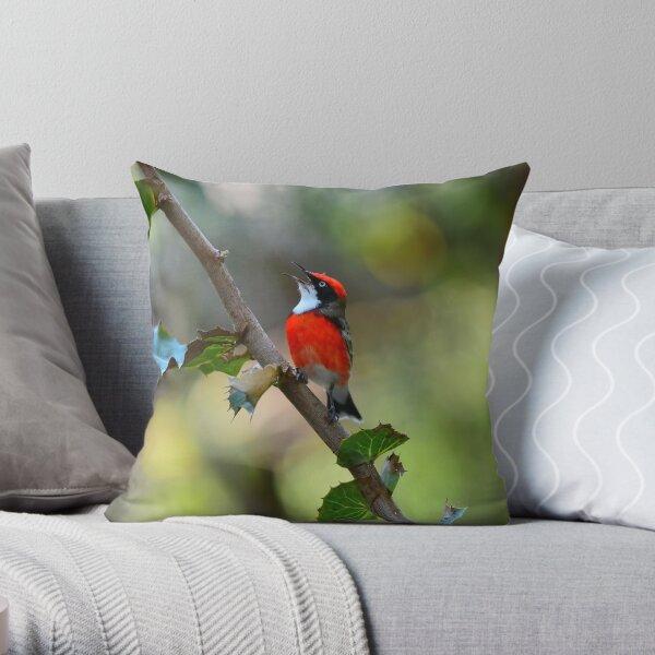 Red Crimson Chat Singing Throw Pillow