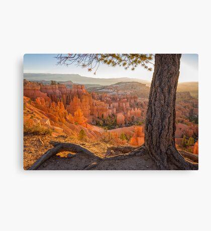 Bryce Canyon National Park Sunrise - Utah Canvas Print