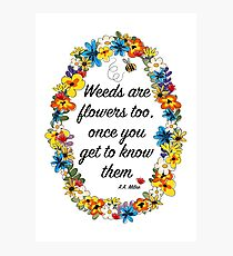 Weeds are flowers too... Photographic Print