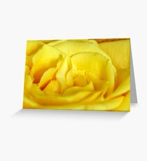 Yellow rose macro Greeting Card