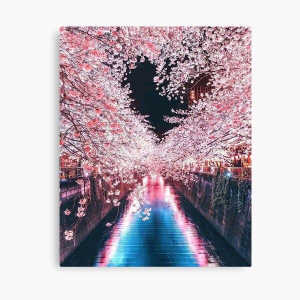 Tokyo cherry blossoms - Japan lights Canvas Print