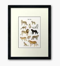 Wild Cats Framed Print