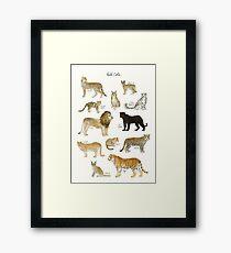 Wilde Katzen Gerahmtes Wandbild