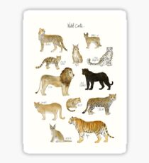 Wild Cats Sticker
