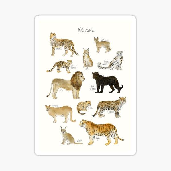 Wild Cats Sticker