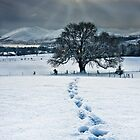 Lonely Footprints by Derek Smyth