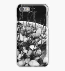 The Evolution of Nature iPhone Case/Skin