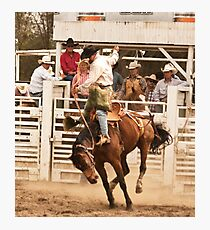 Rodeo Cowboy Riding a Wild Horse Photographic Print