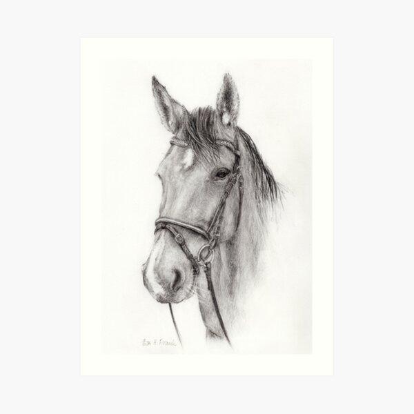 Horse head (from Alice) Art Print