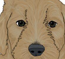 Starbuck (puppy) Sticker