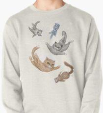 Katze Sweatshirt