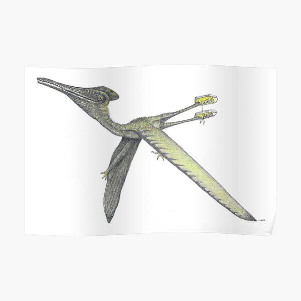 Pterodactyl in sneakers Poster
