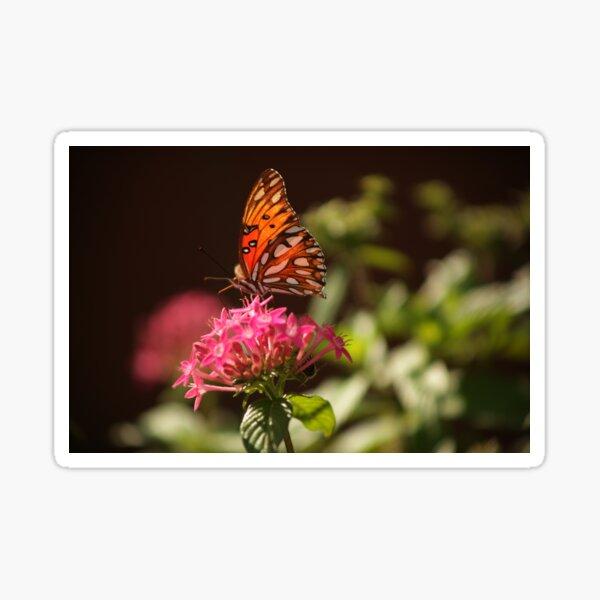 Gulf Fritillary butterfly Sticker